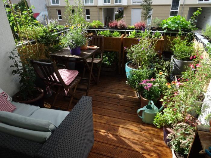 Fertiger Sommerbalkon mit >50 verschiedenen Pflanzen!