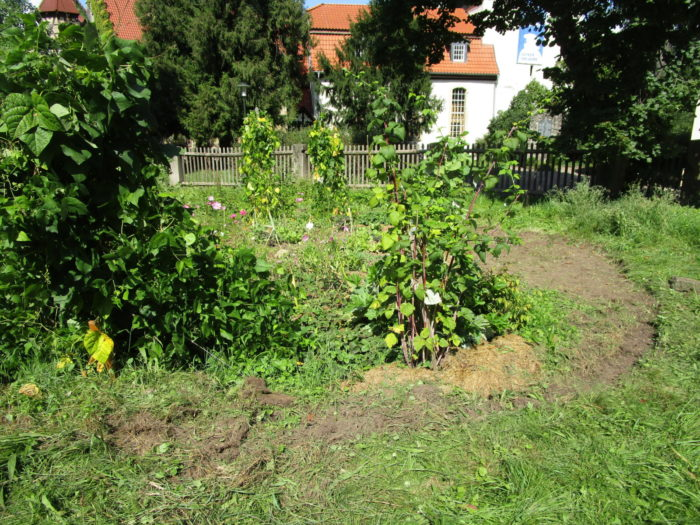 Erweiterung des Mandala-Beetes (Gemüse, Obst, Blumen, Kräuter)