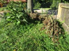 Ein Totholzwall gibt auch Insekten Unterschlupf.