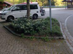 Hotzenwald: Rickenbach: Natur nah dran: Beet 1