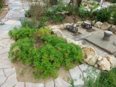 Die Gartenschau Natur in Pfaffenhofen an der Ilm lebt und summt weiter . . .