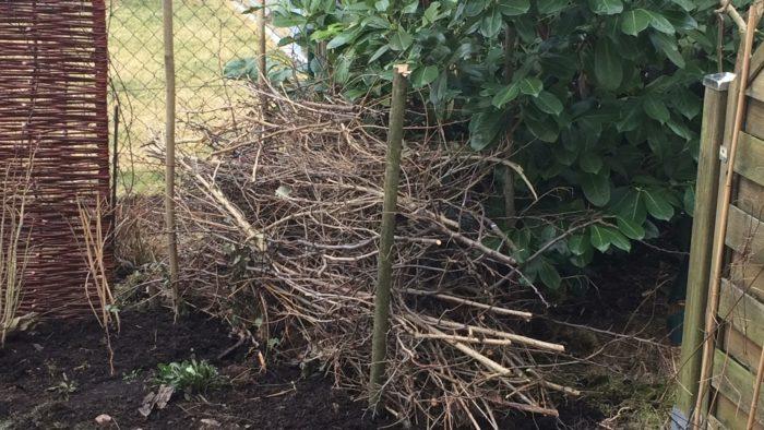Beginn eine kleine Totholzhecke anzulegen um den Kirschlorbeer meiner Nachbarn aufzuwerten. Leid ...